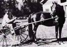 Historical Lippitt Photos